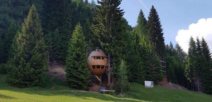 Case sull'albero a forma di Pigna