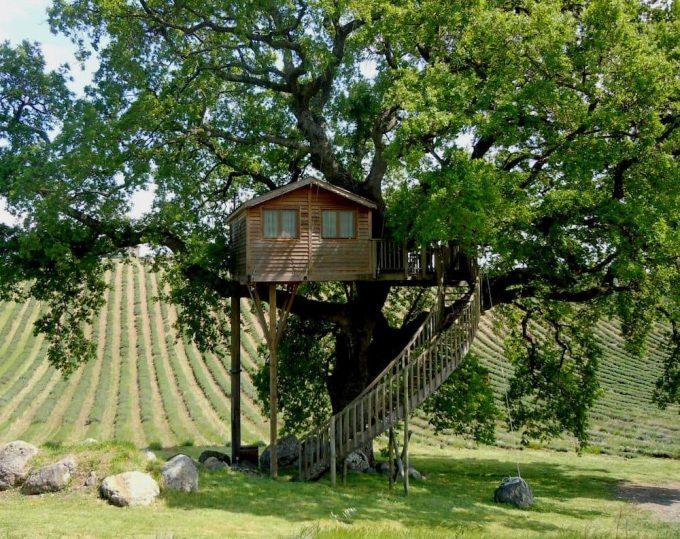 Casa sull'albero Suite Bleue