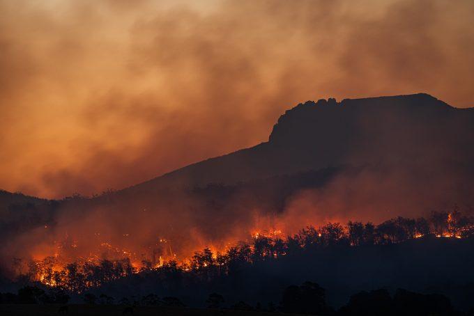 incendio foreste